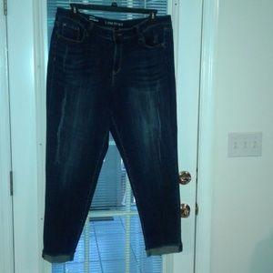 Lane Bryant denim jeans